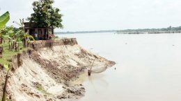 An eroded river bank in Nadia district. Picture by Abhi Ghosh