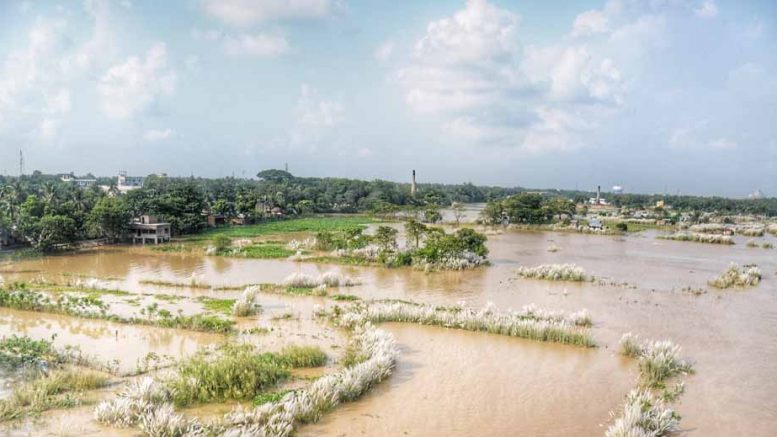 Inundated areas in Mayapur. Picture by Pranab Debnath