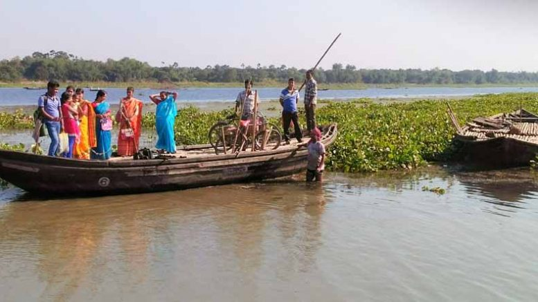 A man trying to push ahead a boat through the dense cover of water hyacinth in Char Paanpara