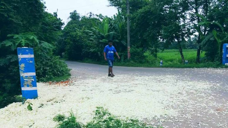 Unsold flowers thrown on road in Nokari of Ranaghat