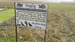 A board put up for public awareness in Chakdah